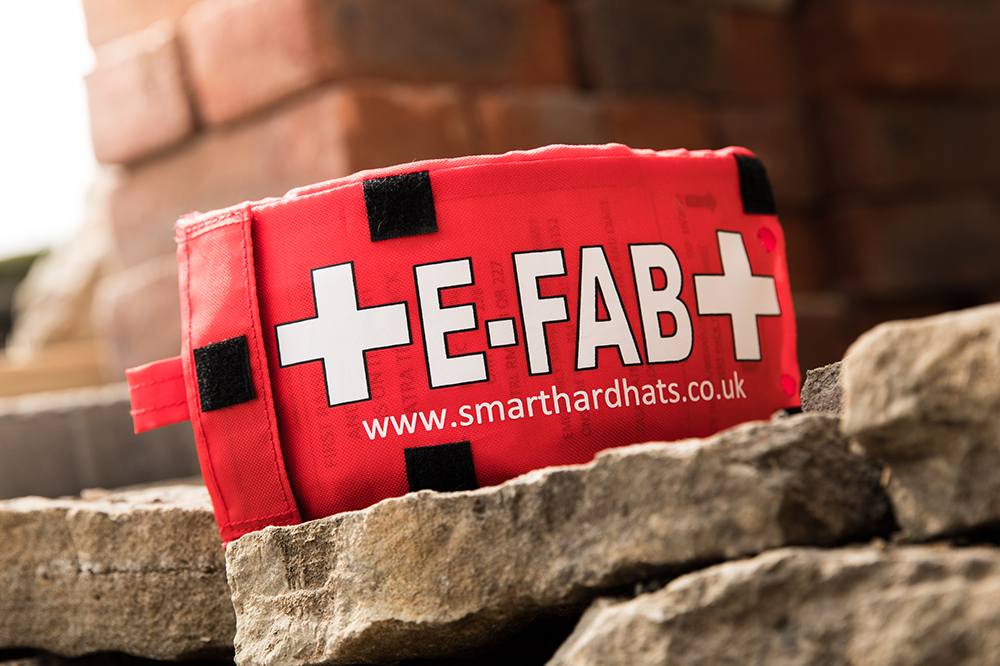 Photo of the E-FAB insert